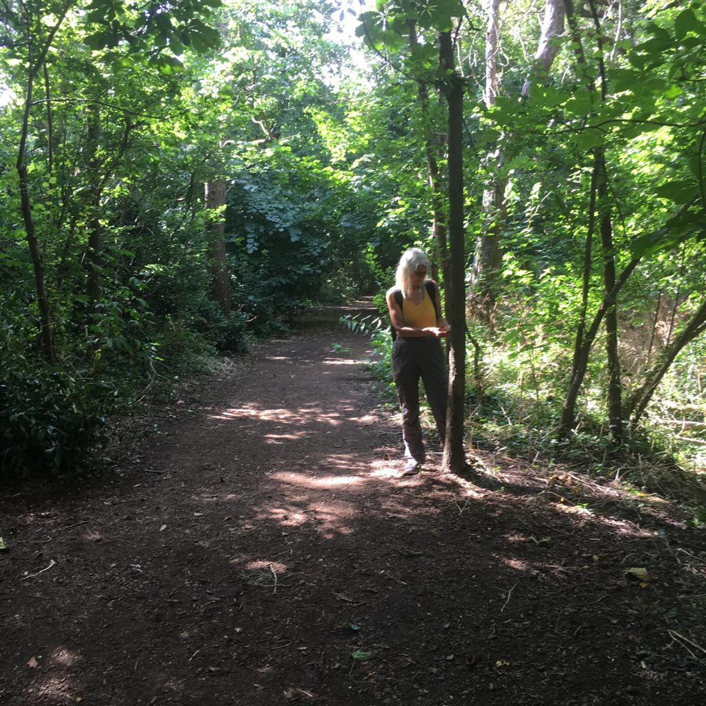 Forest Bathing at Cannon Hill Common, London