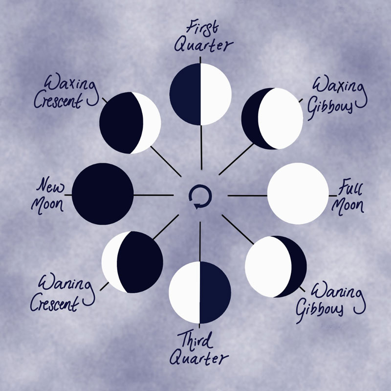 New Moon New Vision; Lunar Cycle Alignment Programme